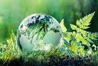 Environmental Studies (BMC:103)