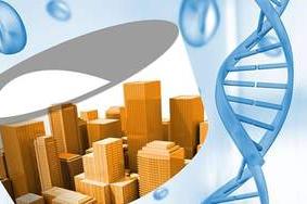 Human Genetics and Human Variation (BANT 610)