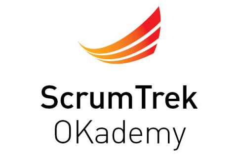 Scrum Master Hard Skills (SMHS17-06)