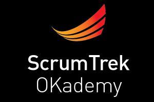 Scrum Master Soft Skills (SMSS17-06)