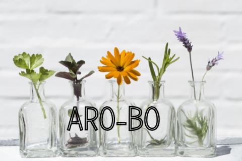 Aromatherapie Modul Botanik