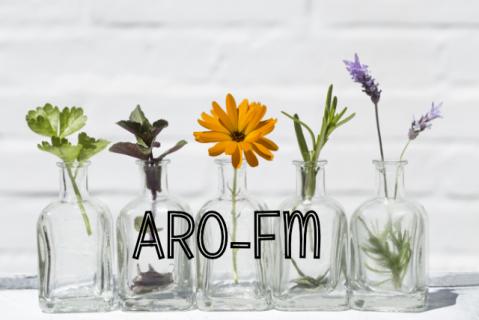 Aromatherapie Modul freundliche Moleküle