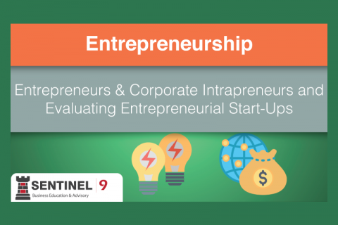 Entrepreneurs & Corporate Intrapreneurs and Evaluating Entrepreneurial Start-Ups (J_S9M3)