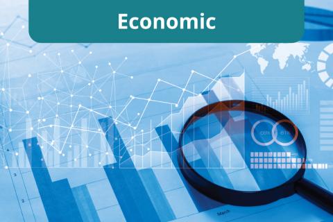 Course | Economics (B_S2)