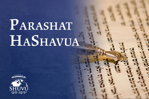 Parashat HaShavua Español (non-101-es)