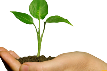 ISO 14001:2015 ENVIRONMENTAL MANAGEMENT SYSTEMS AWARENESS (EMS01)