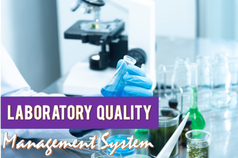 ISO/IEC 17025:2017 LABORATORY QUALITY MANAGEMENT SYSTEMS - ONLINE (LQMS)
