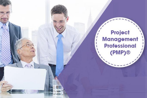 Project Management Professional (PMP)® Exam Prep - Sixth Ed. (CA004)