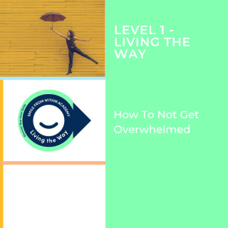 L1: How to NOT Get Overwhelmed with Learning About Dental Assisting (L1-V1.L1MINI)