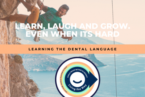 L1: Learning The Dental Language (L1-V4.L1)