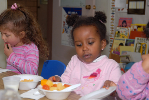 Preventing Foodborne Illnesses in Child Care Settings - Learning Course (EH02 - LC)