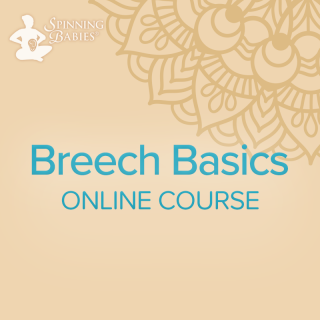 Breech Basics Online (BB)