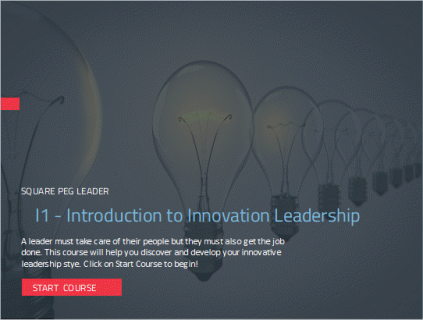 I1-4:Innovation Leadership (Course) (I101)