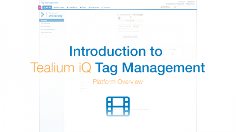 2. TiQ Tag Management: Platform Overview