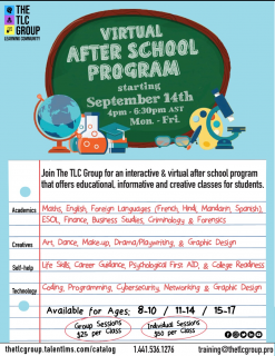 Virtual After-School Program (To Register email: training@thetlcgroup.pro) (AS01)