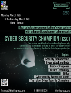 Cyber Security Champion (CSC)