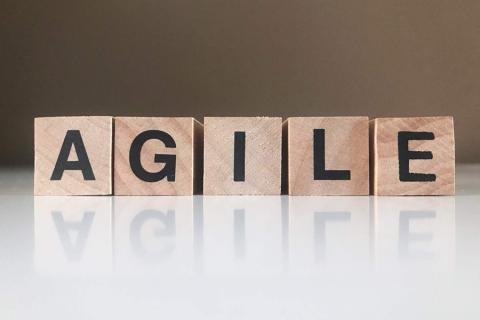 Adopting Agile (AG100)