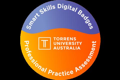 Smart Skills Digital Badges Professional Practice Assessment
