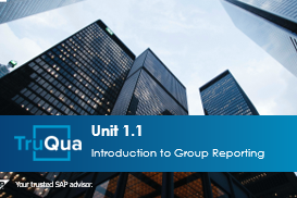 Unit 1.1: Introduction to Group Reporting (GR 1.1)