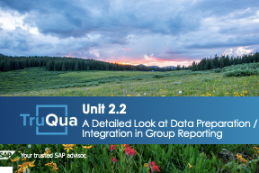 Unit 2.2: A Detailed Look at Data Preparation/Integration in Group Reporting (GR 2.2)