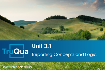 Unit 3.1: Reporting Concepts and Logic (GR 3.1)