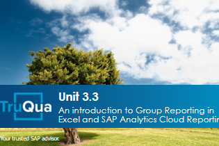 Unit 3.3: An Introduction to Group Reporting in Excel and SAP Analytics Cloud Reporting (GR 3.3)