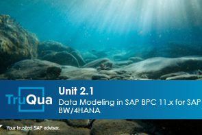 Unit 2.1: Data Modeling in SAP Business Planning & Consolidation 11.x for SAP BW/4HANA (BPC2.1)