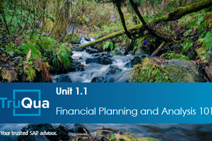 Unit 1:1: Financial Planning & Analysis 101 (BPC1.1)