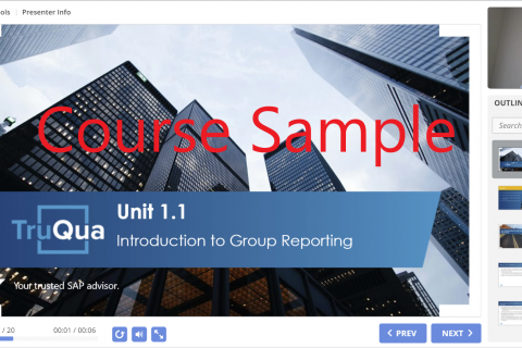 Complimentary Course Sample: Group Reporting Unit 1.1 (000)
