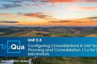 Unit 2.3:  Configuring the Consolidation Monitor in SAP BPC 11.x for SAP BW/4HANA (BPC2.3)