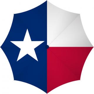 Texas Guardianship Training