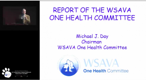 Report of the WSAVA One Health Committee