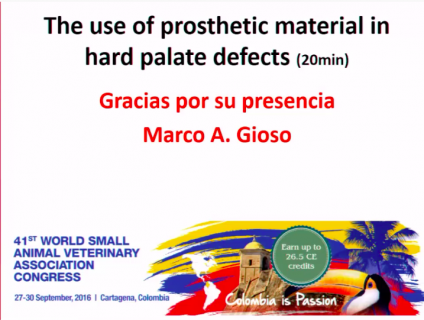 (IN SPANISH) The use of prosthetic material in hard palate defects