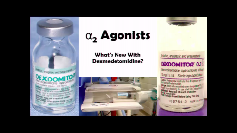 2016 Alpha2 Agonists- What's New With Dexmedetomidine?