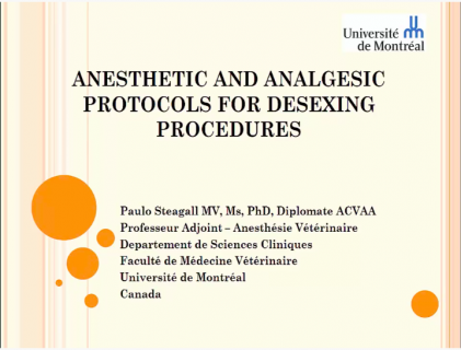 Anesthetic and analgesic protocols for desexing procedures