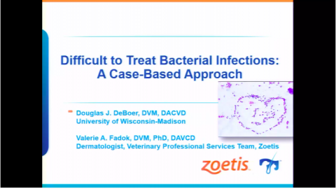 Difficult to Treat Bacterial Infections: A Case-Based Approach (clone)