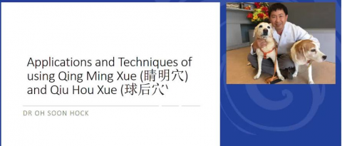 Application & Techniques Of Qing Ming Xue And Qiu Hou Xue