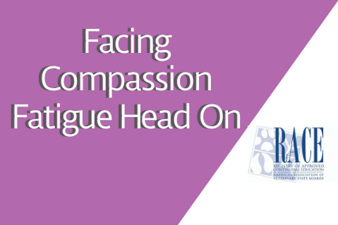 Facing Compassion Fatigue Head On