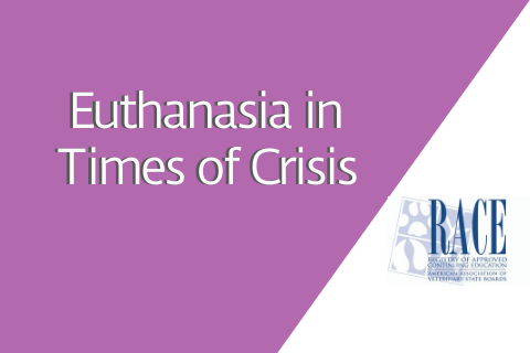 Euthanasia in Times of Crisis
