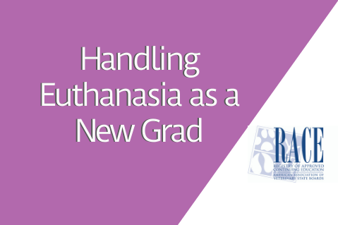 Handling Euthanasia as a New Grad