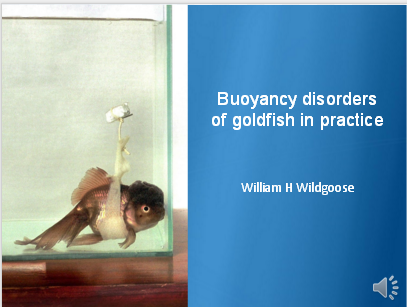 Bouyancy Disorders by Goldfish in Practice by William Wildgoose
