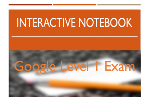 Google Level 1 Exam Interactive Notebook