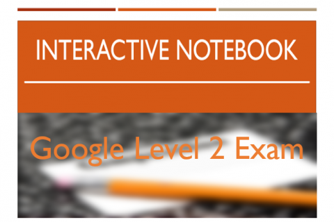 Google Level 2 Exam Interactive Notebook