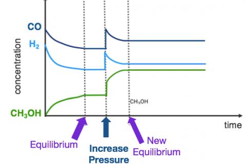 3g. Equilibrium