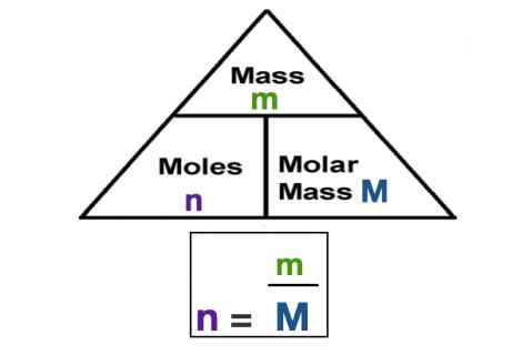 1f. The Mole