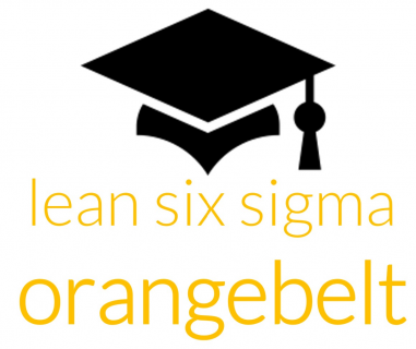 Lean Six Sigma Orange Belt training (inhouse) (OB10)