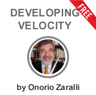 Developing Velocity (DV-OZ)