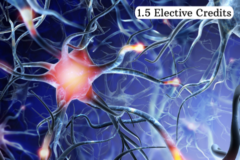 Neuroinflammation & Brain Health