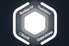 1 Month Wordbee for Translators