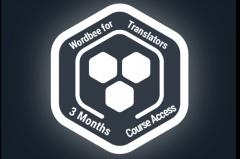 3 Month Wordbee for Translators